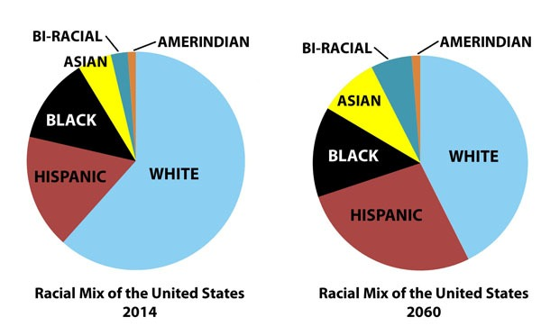 Change in population: Racial Mix of the United States, 2014 and 2060